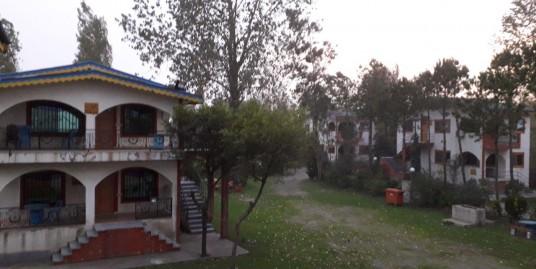 اجاره ویلای شهرکی در زیبا کنار (کد:۱۳۸۳)