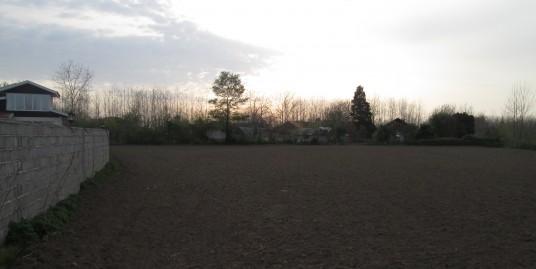فروش زمین ۴۰۰۰ متری در لشت نشا(کد:۵۶۰)