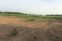 فروش زمین مسکونی در منطقه آزاد زیباکنار(کد۶۲۱)