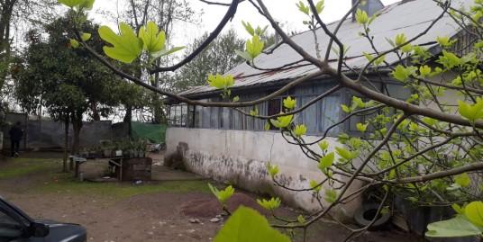 ویلاباغ ۱۰۰۰متری در لشت نشا(کد:۷۶۷)