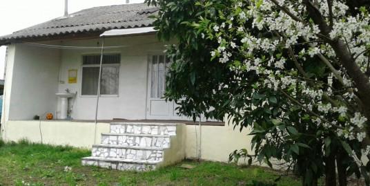 اجاره ویلا باغ در منطقه آزاد زیباکنار (کد:۱۴۱۲)