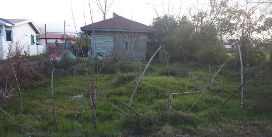 ویلا روستایی ۴۰۰ متری نزدیک دریا در زیباکنار(کد:۶۷۸)