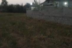 فروش زمین کشاورزی سندار در علی بوزایه لشت نشا(کد:1168)