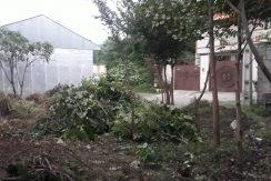 فروش زمین مسکونی در شهر لشت نشا(کد:740)